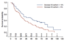 Soluble VE-cadherin: A biomarker in metastatic and hormone-resistant breast cancer?